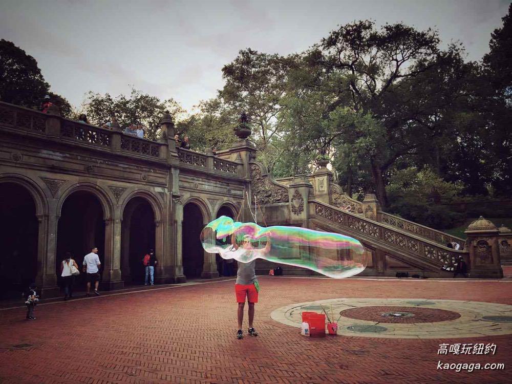 美國紐約 遊覽中央公園 Central Park 4種玩法大公開
