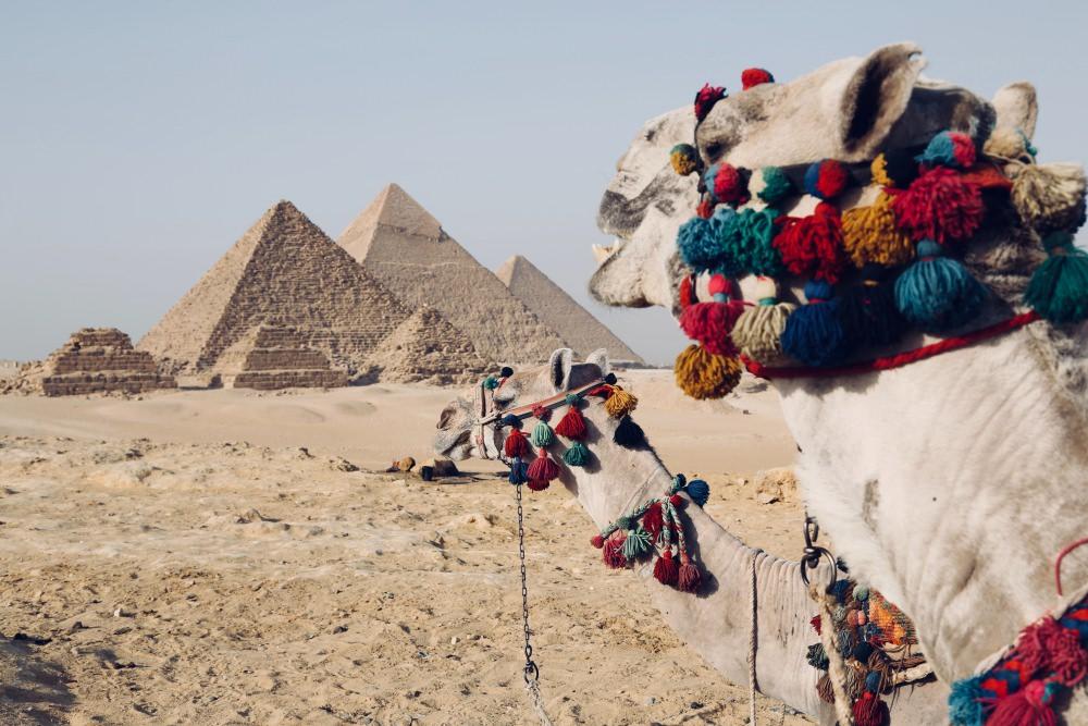 埃及旅遊 到埃及旅行必須知道、必體驗的事(埃及自助、埃及跟團、達人推薦玩法)